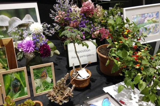 table exposition sept 2019