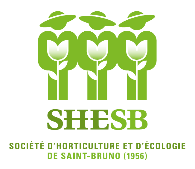 logo SHESB